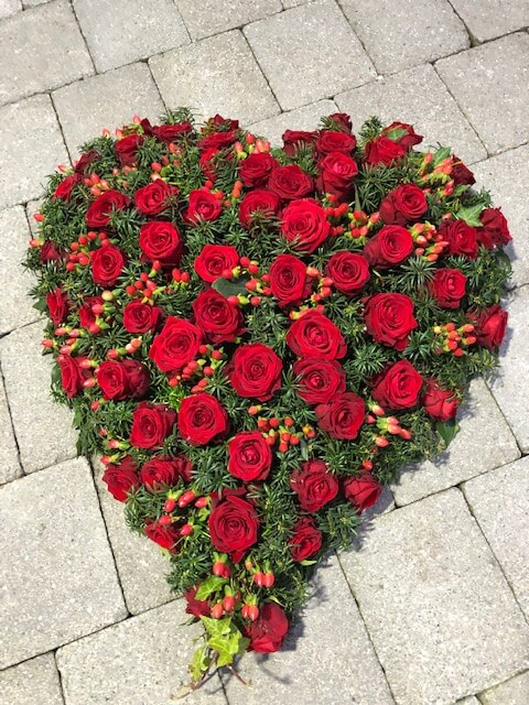 rote Rosen Trauerherzkrank